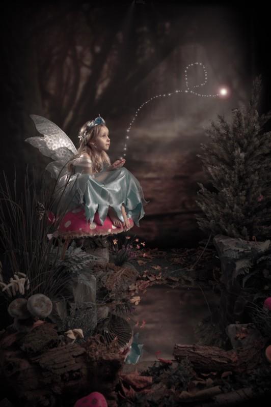 fairy portraits dublin